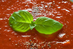 Basil garnish on tomato soup Royalty Free Stock Photo
