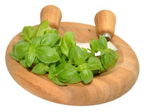 Basil Herb leaves On Chopping Board Stock Photography