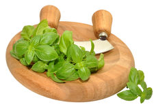 Basil Herb leaves On Chopping Board Royalty Free Stock Photos
