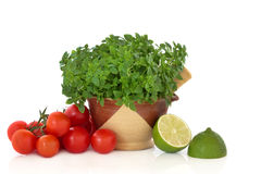 Basil Herb, Tomatoes and Lime Halves stock photos