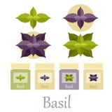 Basil icons set Royalty Free Stock Photo