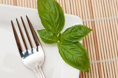 Basil leaf and fork. On white plate as table decoration Stock Image