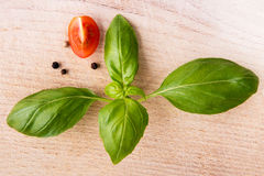 Basil leafs and quarter of cherry tomato on wooden cutting board Royalty Free Stock Photography
