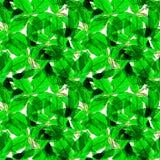 Basil Leafs Seamless Pattern Repeatably hand dragen bakgrund med kryddaörten och basilika Royaltyfri Fotografi