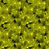 Basil Leafs Seamless Pattern Repeatably hand dragen bakgrund med kryddaörten och basilika Royaltyfria Foton