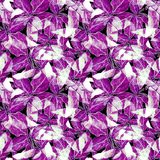Basil Leafs Seamless Pattern Repeatably hand dragen bakgrund med kryddaörten och basilika Fotografering för Bildbyråer