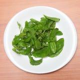 Basil Leaves Fotografie Stock