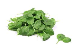 Basil leaves in closeup. Royalty Free Stock Photography