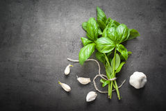 Basil leaves and garlic. At dark slate background. Space for text. Herbal Ingredients for cooking Stock Photo
