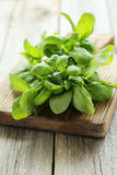 Basil leaves. On grey wooden background Stock Photography