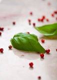 Basil leaves and pink peppercorns Royalty Free Stock Photos