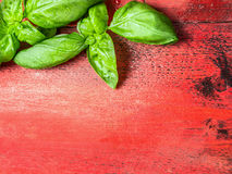 Basil leaves on red wooden background, top view Stock Photography