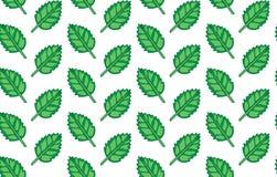 Basil leaves seamless vector pattern Stock Photo