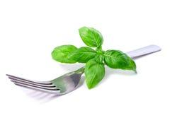 Basil leaves set on a fork stock images