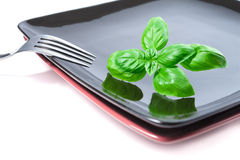 Basil leaves set with fork on plate Royalty Free Stock Photos