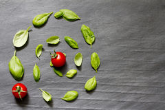 Basil leaves on stone abstract food background Stock Photos