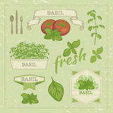 Basil leaves and tomato Stock Images