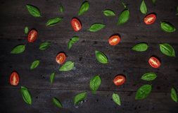 Basil leaves and tomatoes on black Royalty Free Stock Photos