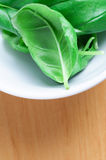 Basil Leaves in White Bowl Royalty Free Stock Image