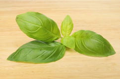 Basil leaves on a wooden board Royalty Free Stock Image