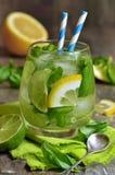 Basil lemonade. Stock Photo