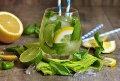 Basil lemonade. Royalty Free Stock Image