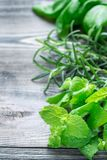 Basil, mint, rosemary. Fresh green herbs laying on wooden background, vertical, copy space Royalty Free Stock Photography