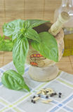 Basil in a mortar Stock Photo