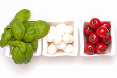 Basil, Mozzarella and tomatoes Royalty Free Stock Photos
