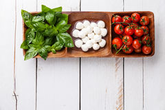 Basil, mozzarella, tomatoes Royalty Free Stock Image