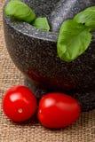 Basil n Tomato Stock Image