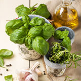 Basil, nuts and olive oil Royalty Free Stock Images
