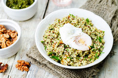 Basil nuts pesto quinoa with walnuts, parsley and poached egg Stock Photography