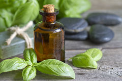 Basil oil and fresh herbs Stock Photo