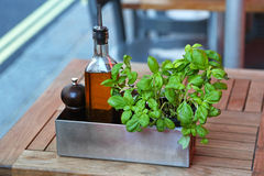 Basil and oil Stock Photography