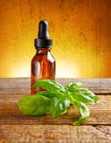 Basil oil Stock Image