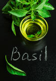 Basil with olive oil on a blackboard Stock Photography