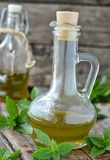 Basil olive oil Royalty Free Stock Images