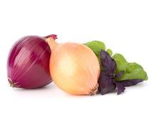 basil opuszczać życie cebuli wciąż Zdjęcia Royalty Free