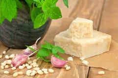 Basil and parmesan Stock Photos