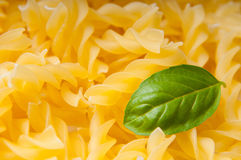 Basil and pasta Royalty Free Stock Photography