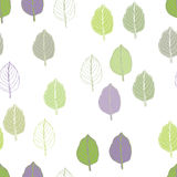 Basil pattern Stock Images