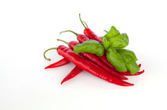 Basil and pepperoni. On white background stock photos