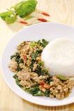 Basil pork rice, thai popular food. Basil pork rice stock image