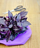 Basil purple with scissors on a board Stock Photo