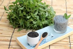 Basil seeds for fiber beverage and raw seed Stock Photos