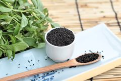 Basil seeds for fiber beverage and raw seed Royalty Free Stock Photo