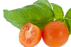 Basil with small tomato (with clipping path) Royalty Free Stock Photos