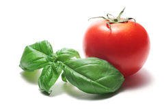 Basil and tomato Royalty Free Stock Photos