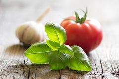 Basil tomato and garlic italian food still life on vintage planks Royalty Free Stock Photos
